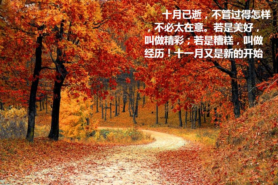 导出图片Tue Oct 30 2018 10_56_03 GMT+0800 (中国标准时间).png